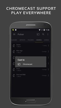 Pulsar Music Player 4