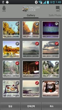 Safe Gallery Free (Media Lock) 3