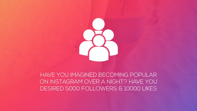 Real Followers for Instagram 1