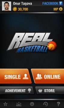 real-basketball-1