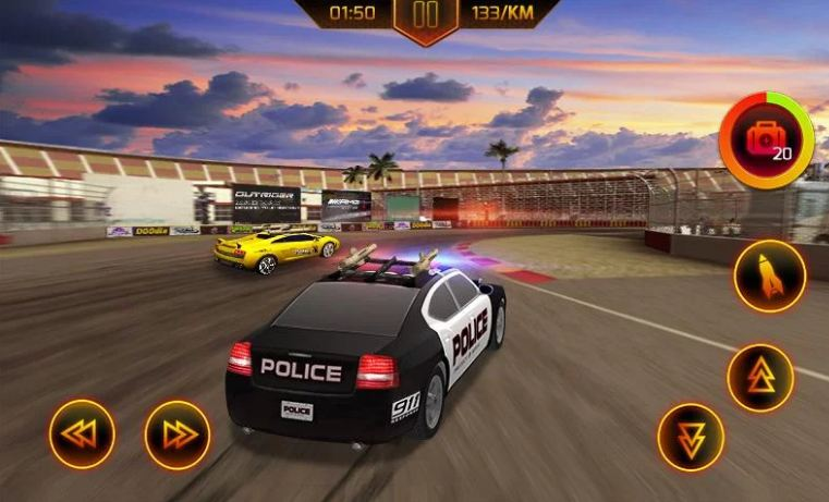 Police Car Chase 4