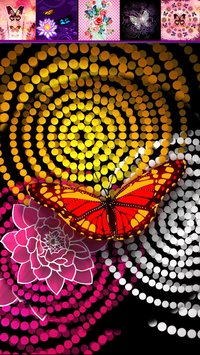 Butterfly Fashion Wallpapers5