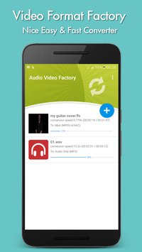Video Format Factory1