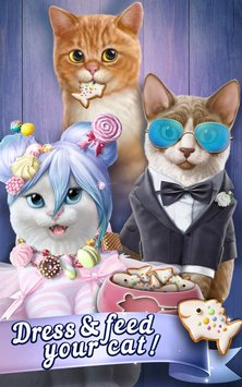 Knittens Sweet Match 3 Puzzles & Adorable Kittens 3