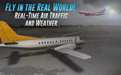 Airline Commander A real flight experience