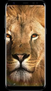 4D Live Wallpapers Animated AMOLED 3D Backgrounds12