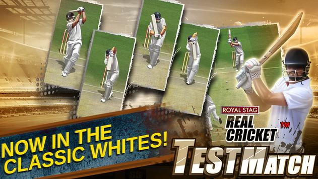 Real Cricket Test Match3