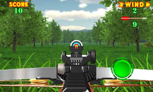 Crossbow-shooting-gallery-Shooting-on-accuracy4