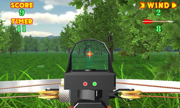 Crossbow-shooting-gallery-Shooting-on-accuracy5