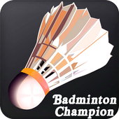 Real-Badminton-3D